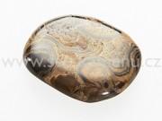 Stromatolit kámen